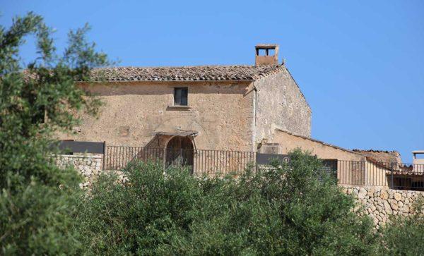 Mallorca Events Olivenölanbau