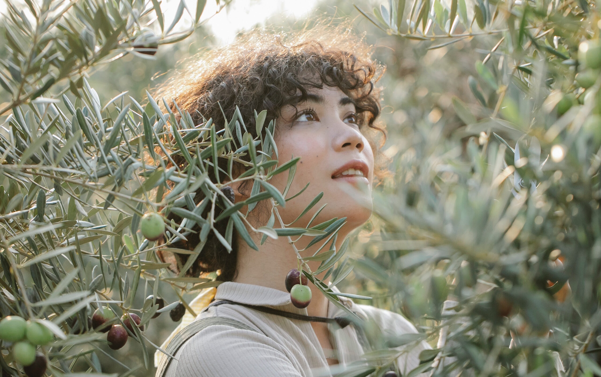 caminar entre olivares
